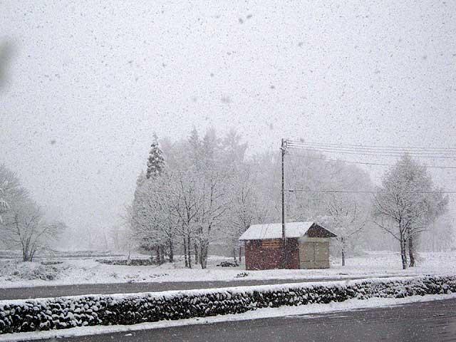季節はずれの雪