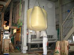 籾を乾燥機へ